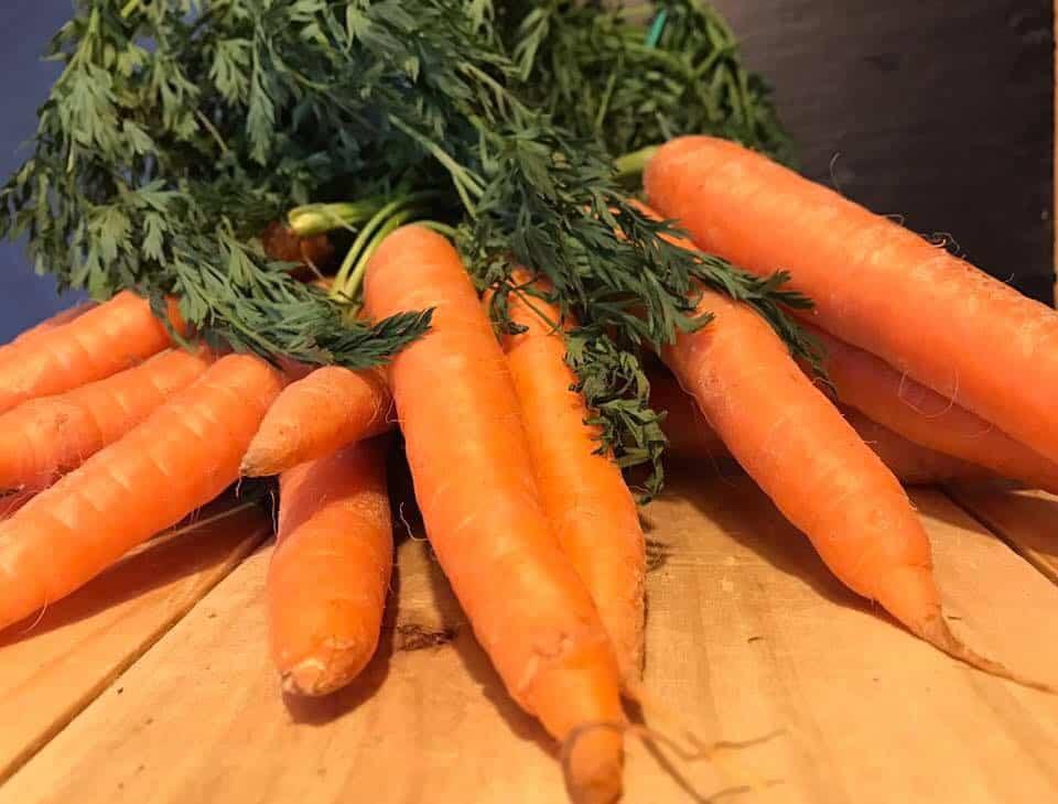 Die Moro´sche Karottensuppe